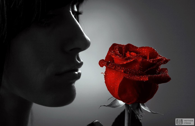 Девушка с крассной розой.