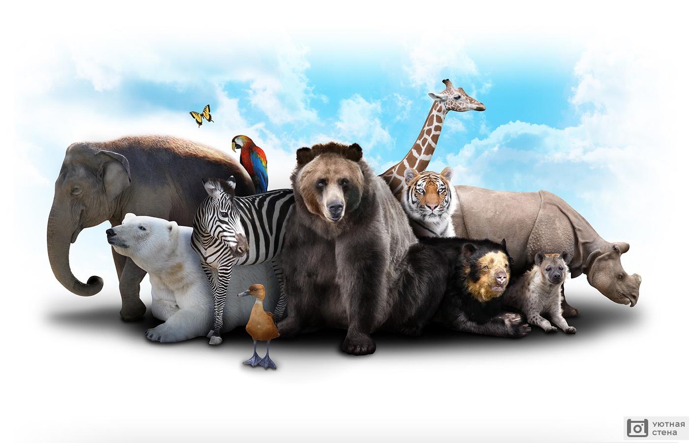 Картинка с надписью млекопитающие
